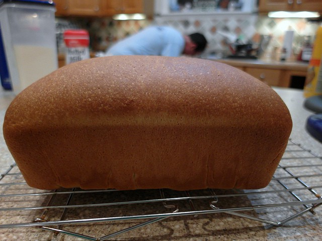 Loaf of tangzhong bread which used milk instead of water, so a darker brown,  on a cooling rack.