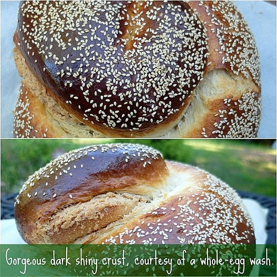 challah bread recipe with egg wash and sesame seeds