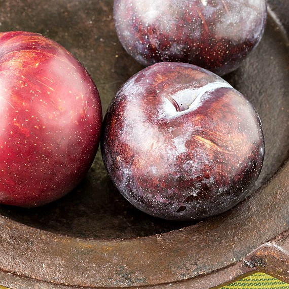 3 plums on a metal plate