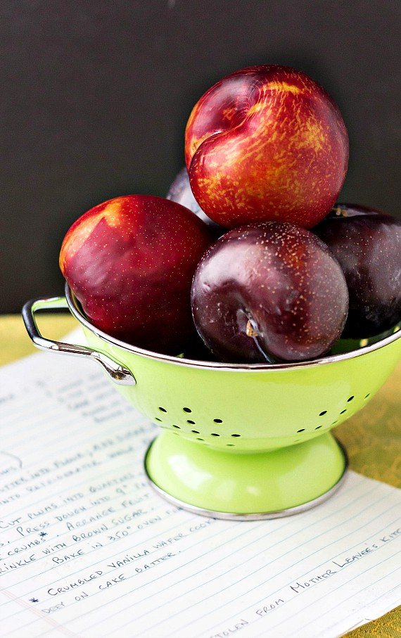Gorgeous red and black plums, in a green colander with a handwritten recipe for German plum cake