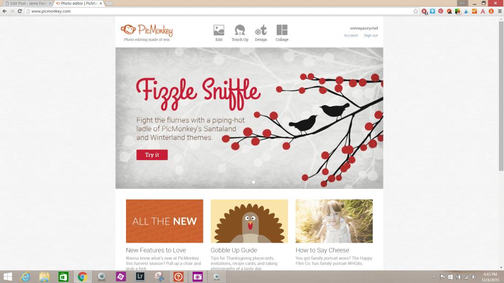 Screenshot of home page at PicMonkey