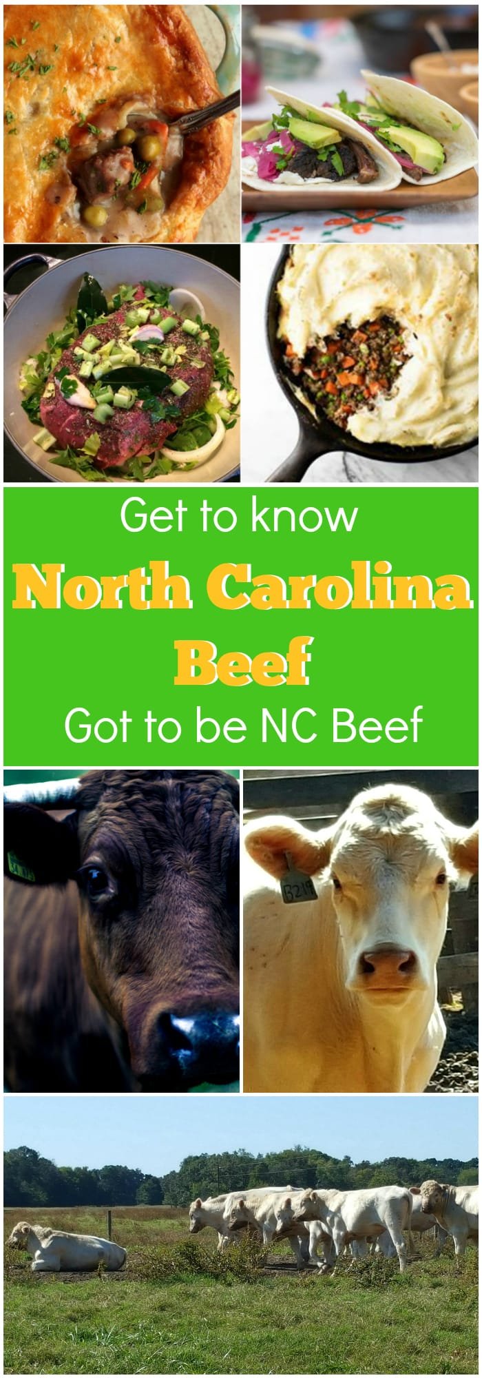 Get to know North Carolina Beef. NC might be better known for pork and poultry, but there are hundreds of farms, small and large, producing some excellent beef in North Carolina. Grass-fed, non-GMO, you name it and you can probably find it in NC! #sponsored | pastrychefonline.com
