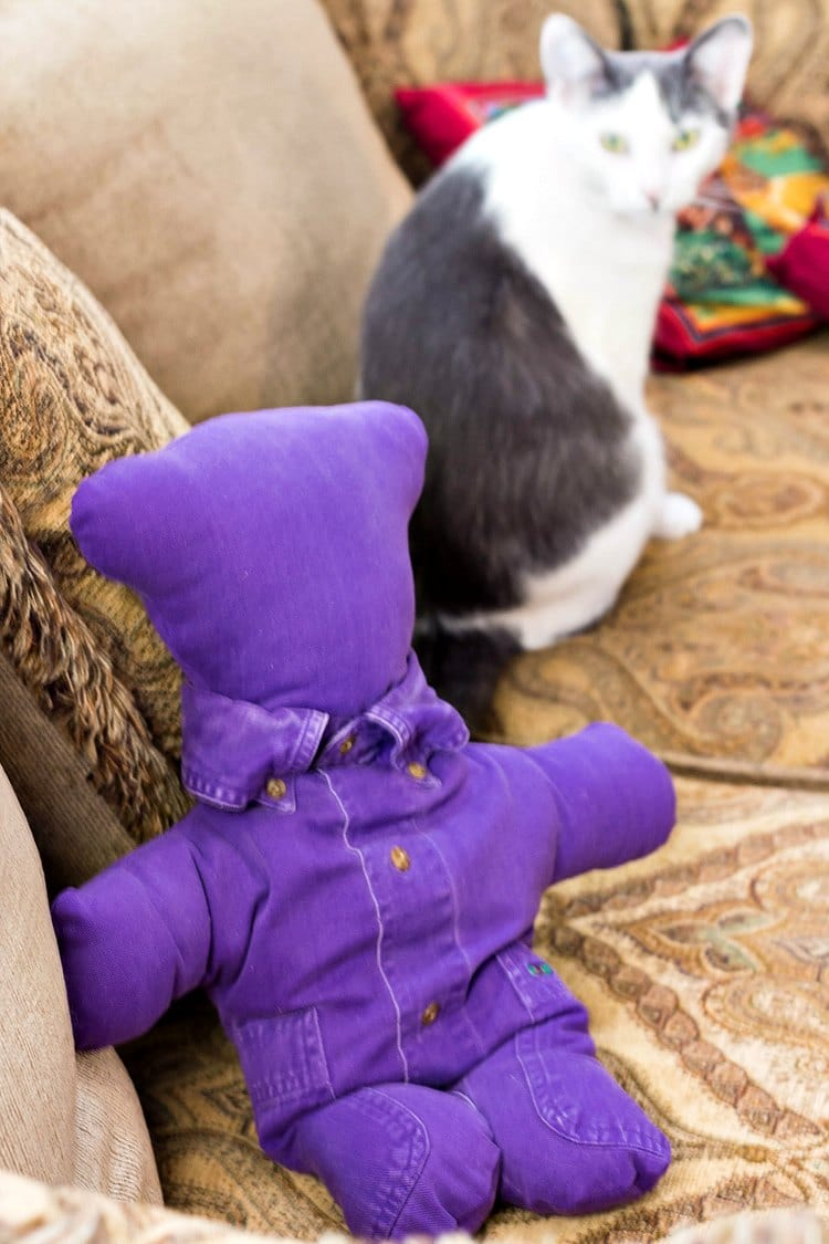 Purple teddy bear made from favorite shirt. Cat looks on.