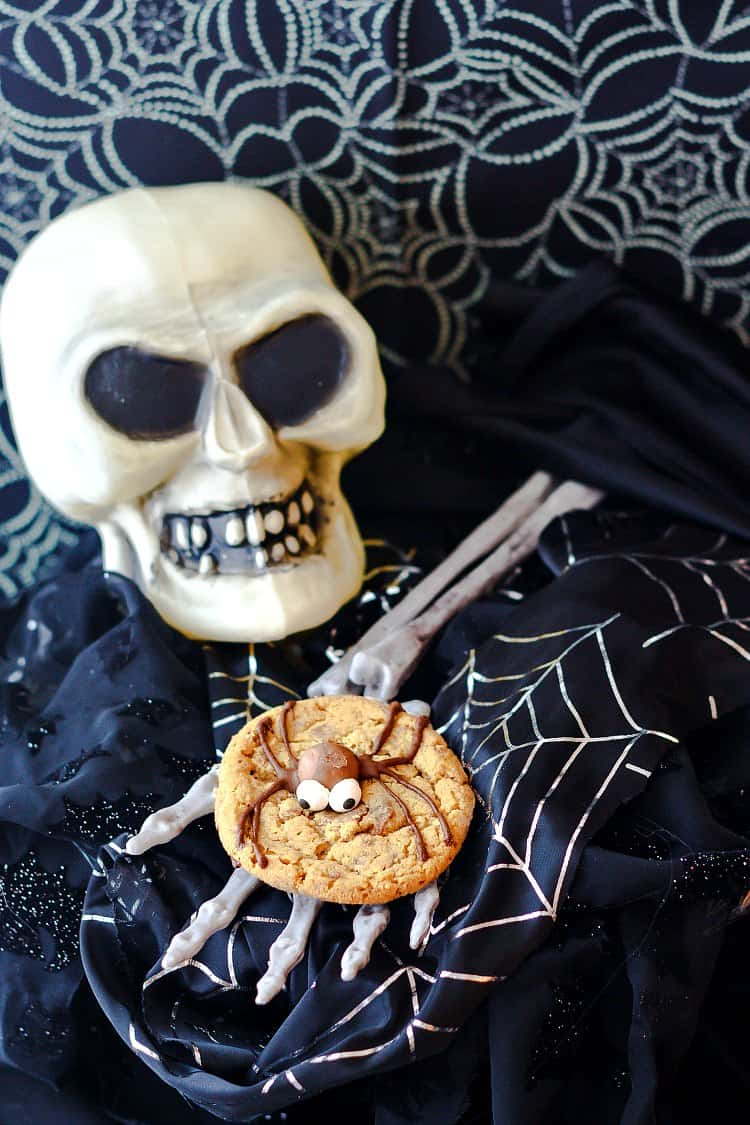 One malted milk ball spider cookie with a chocolate bodied spider on a skeleton hand with a skull.