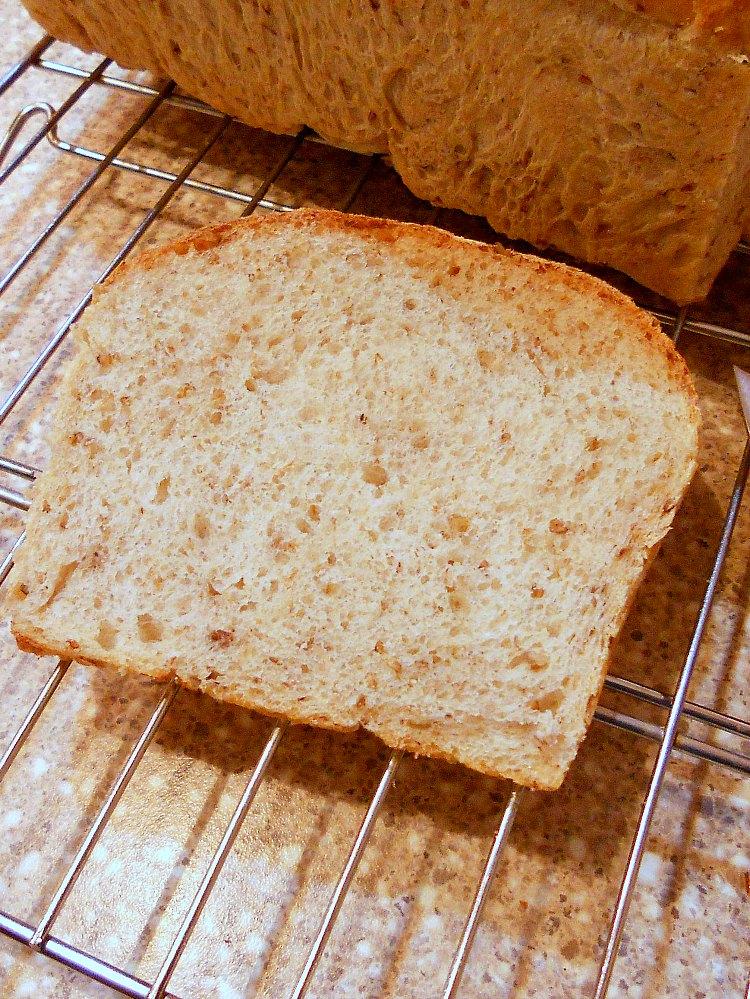 A slice of spent grain sandwich bread on a cooling rack.