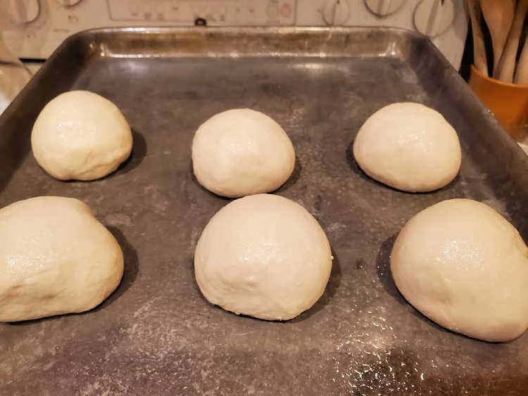 6 rounds of bagel dough rising on a tray.