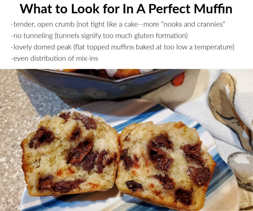 A split cherry chocolate chip and pecan muffin with text explaining four things to look for in a perfect muffin.