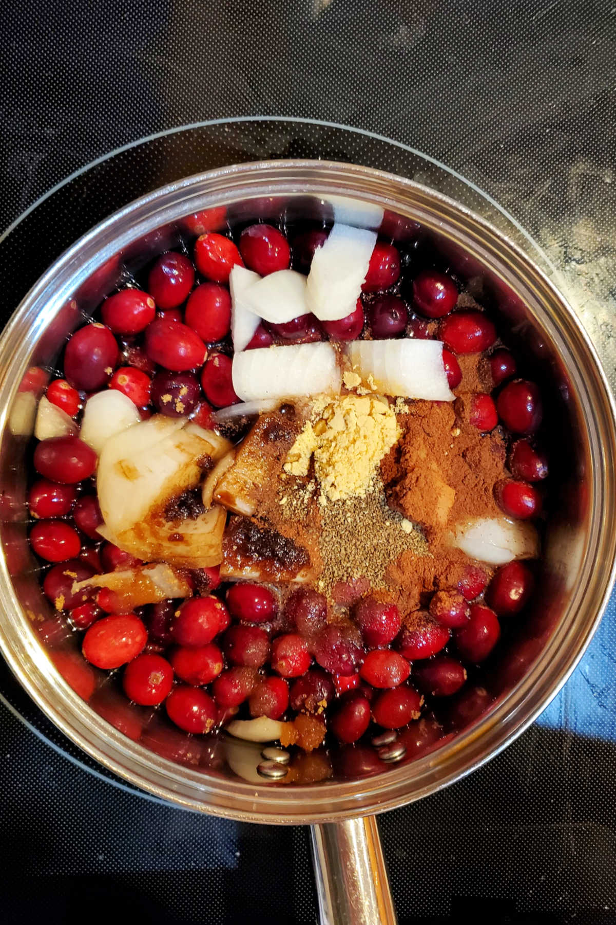 Overhead shot of pot on stove with cranberries, onions, spices and more ready to make cranberry ketchup.